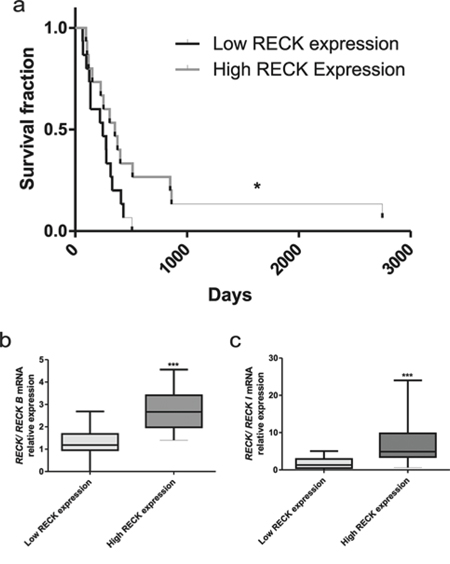 RECK expression and GBM patients survival rate.