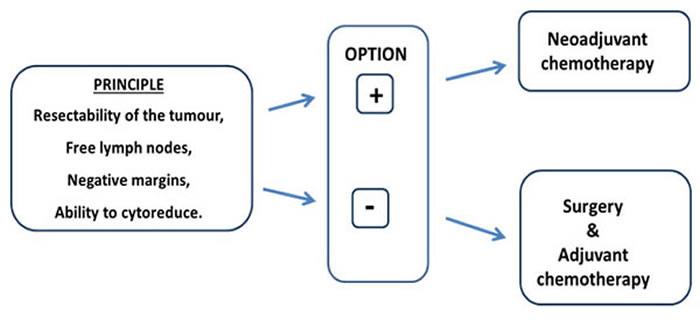 Principle of neoadjuvant chemotherapy strategy