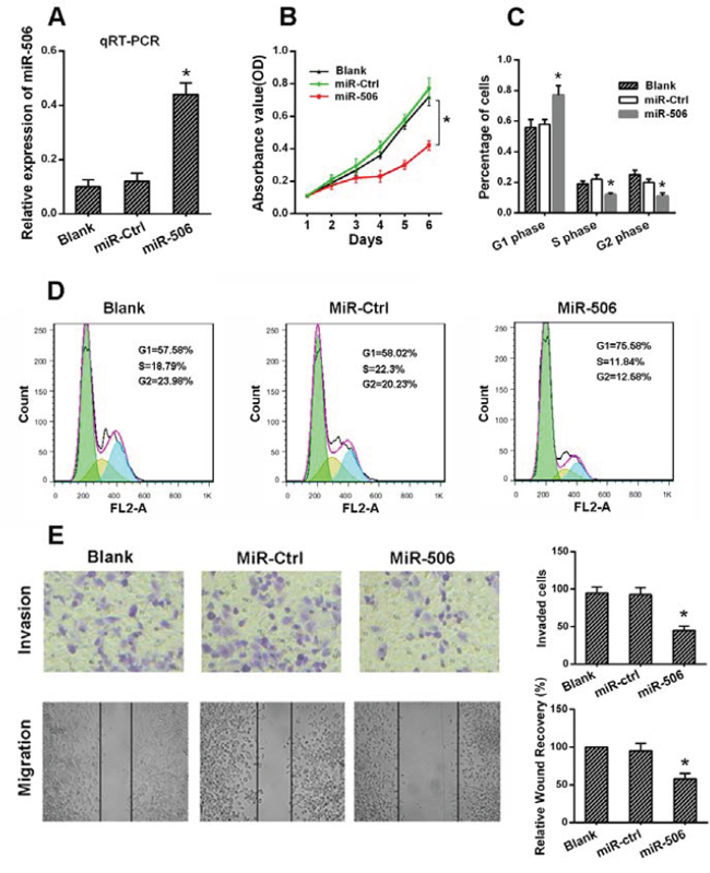 The ectopic expression of miR-506 inhibited the proliferation, migration and invasion of colon cancer cells.