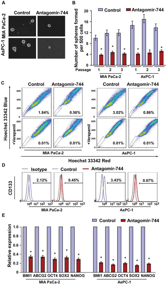 MiR-744 inhibition suppresses pancreatic cancer stem cell-like phenotype.