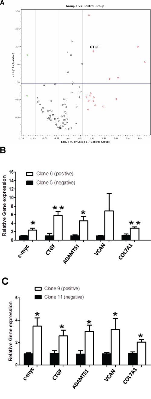 Changes in genes expression associated with p62/IMP2 overexpression.
