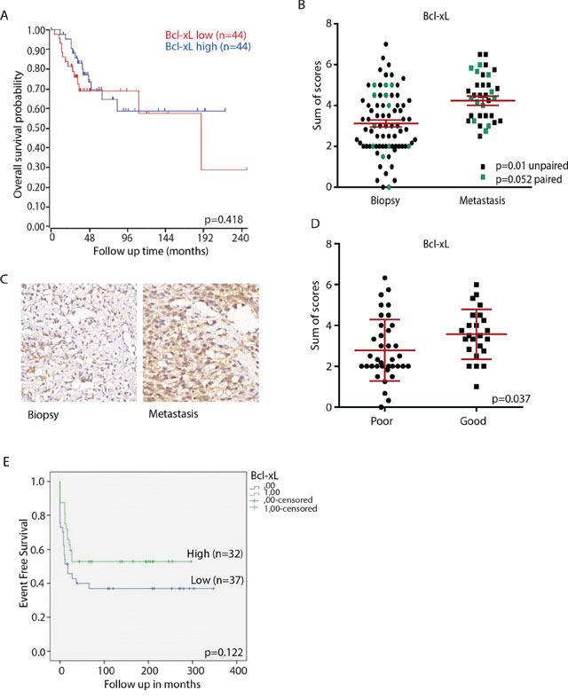 Bcl-xL expression in osteosarcoma clinical samples.