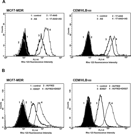 Effect of SIRT1 inhibitors on P-gp-mediated efflux activity of Hsp90 inhibitors in MDR cells.
