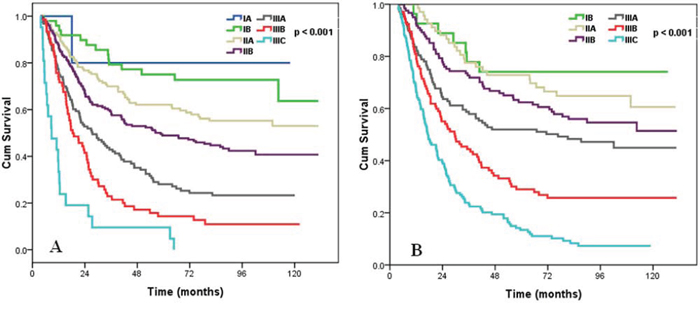 Survival curves of ESCC patients according to AJCC/UICC TNM staging system A, and TLM staging system B.