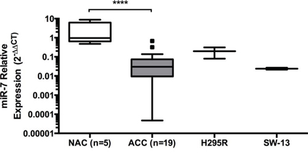 miR-7 is under-expressed in ACC clinical samples.