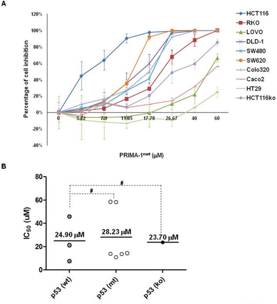 PRIMA-1met inhibited cell proliferation in CRC cell lines.