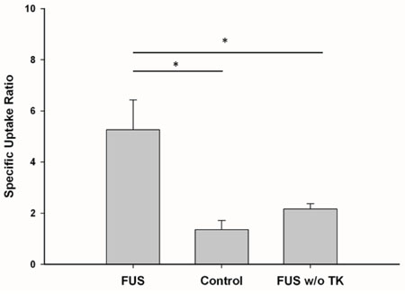Specific uptake ratio of 123I-FIAU derived from micro-SPECT/CT images.