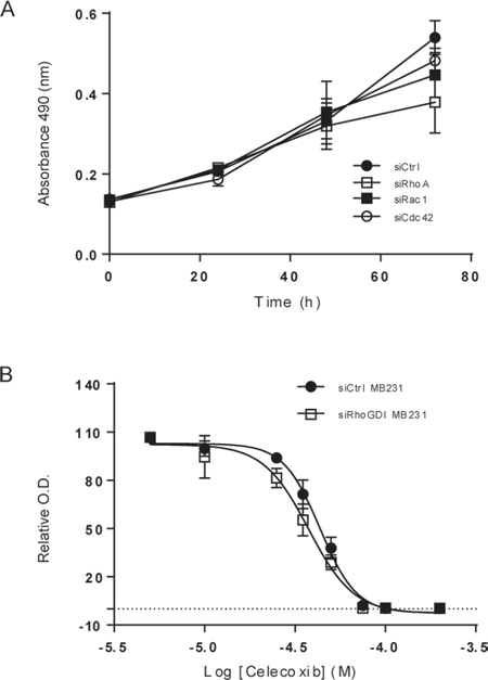 Blockade of Rho GTPases and COX-2 decreases cell viability in breast cancer cells.