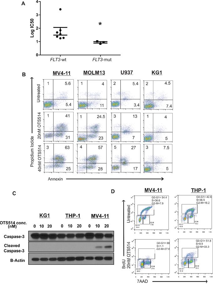 TOPK inhibitor exhibits preferential anti-leukemia activity in FLT3 mutated AML.