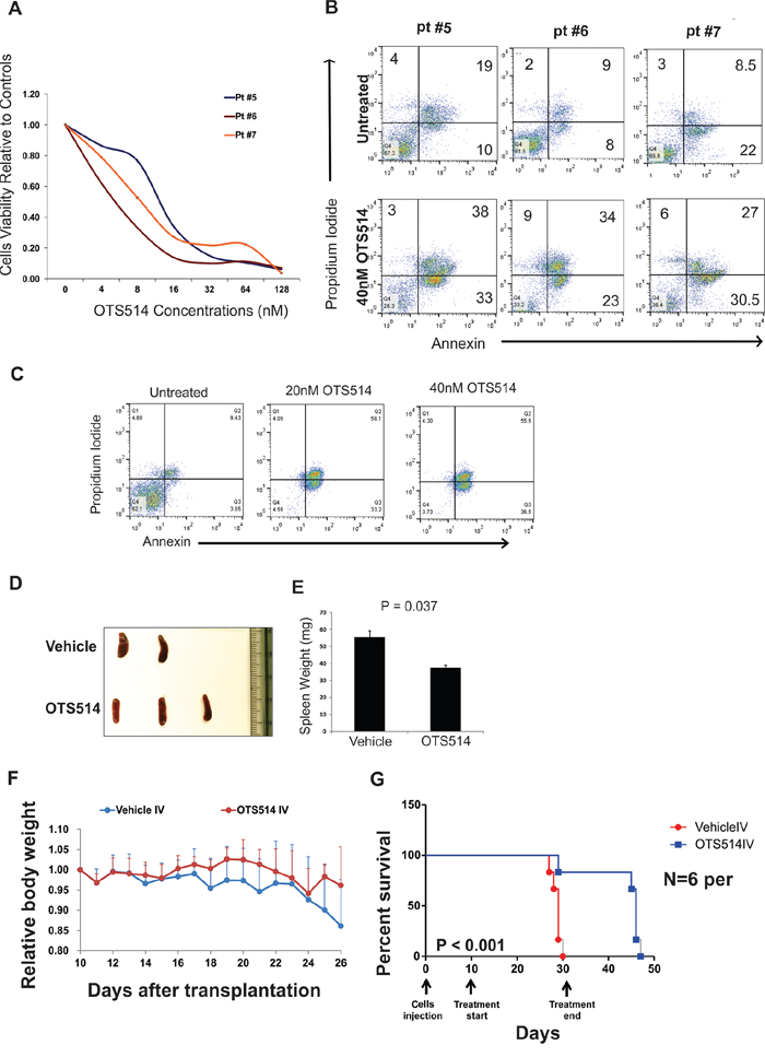 TOPK inhibitor exhibits anti-leukemia activity in FLT3 mutated AML blasts and in MV4-11 murine model.