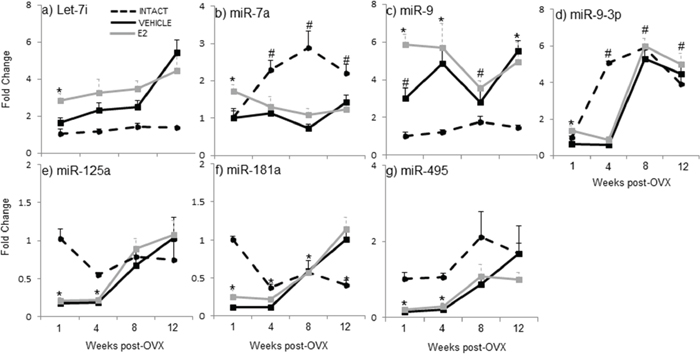 E2 regulation of mature miRNA expression in the hypothalamus after increasing lengths of ovarian hormone deprivation.