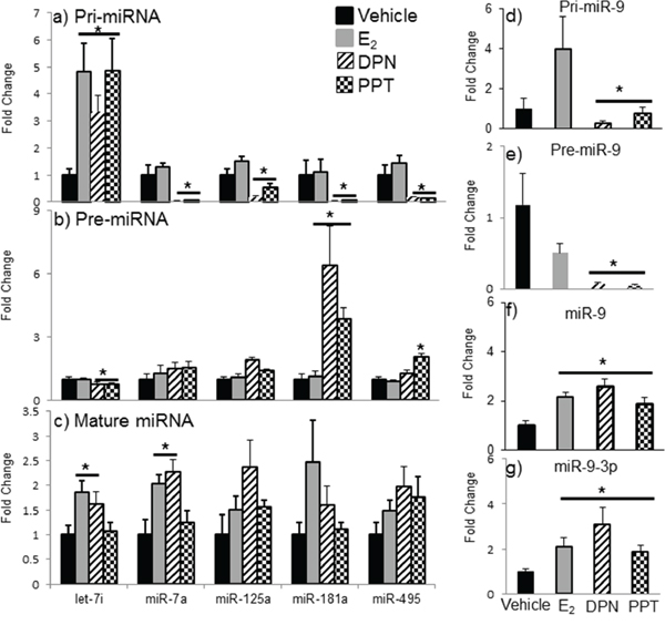 Effects of ERα and ERβ specific agonists on mature miRNA expression in the aged hypothalamus following 1 week of ovarian hormone deprivation.