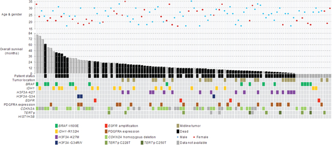 Clinical, genetic and molecular characteristics of 107 young adult glioblastomas aging from 17 years to 35 years.