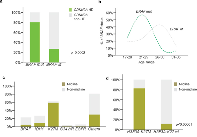 Correlation between clinicopathological and molecular variables of young adult glioblastoma.
