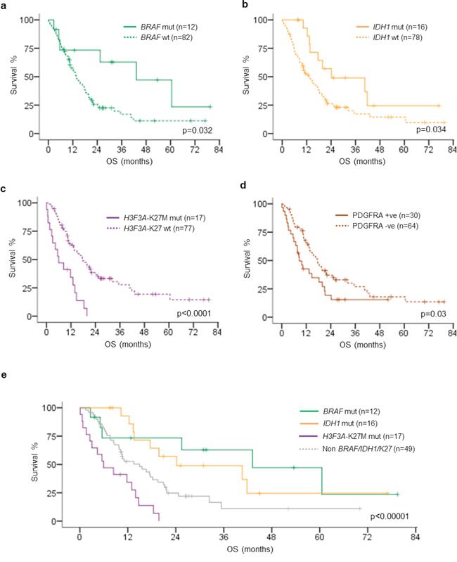 Kaplan–Meier survival analysis of BRAF mutation, IDH1 mutation, H3F3A-K27M mutation, PDGFRA immunohistochemistry positivity and subgroups defined by BRAF, IDH1, H3F3A-K27M mutations.