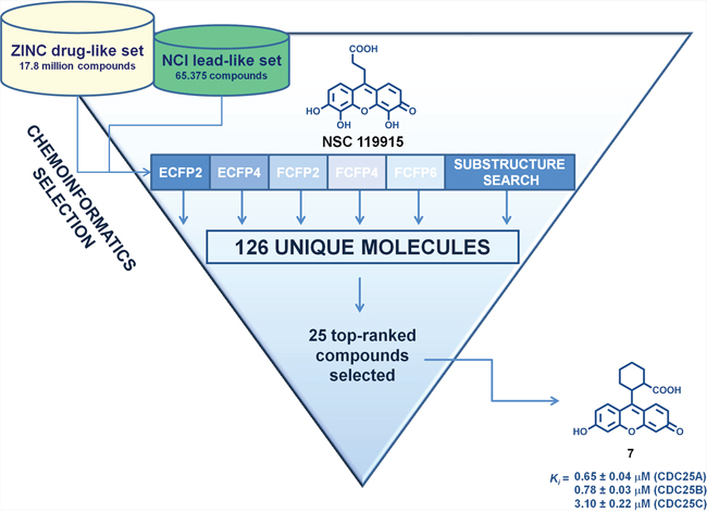 Flow chart of the multiple ligand-based chemoinformatic strategy implemented in this work.