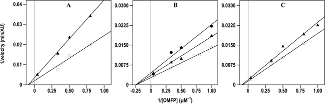 Effect of compound 7 on the Lineweaver-Burk plots of the A. CDC25A B. CDC25B and C. CDC25C phosphatase activity.