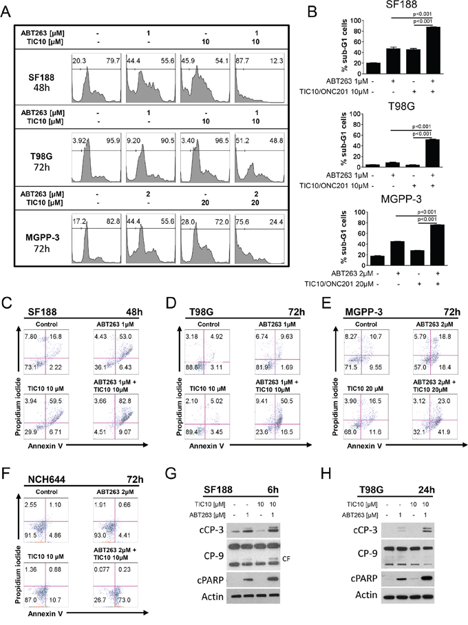 Combined treatment with ABT263 and TIC10/ONC201 results in an enhanced induction of apoptosis.