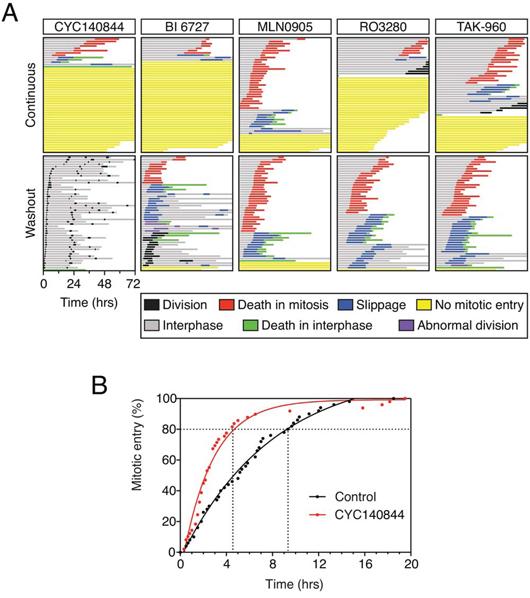 Comparison of Plk1 inhibitors.