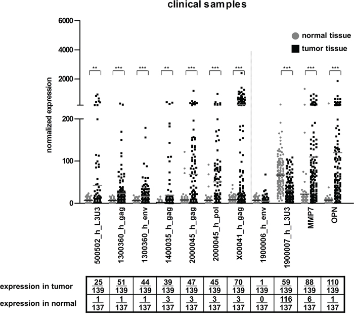 HERV-H expression in clinical samples.