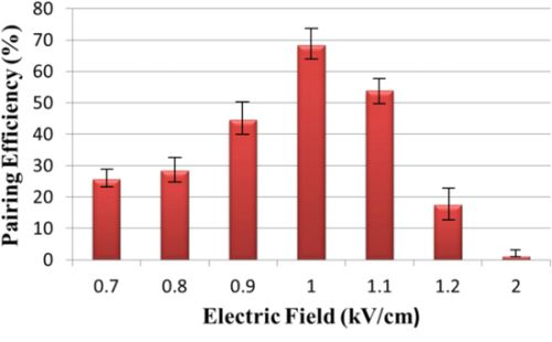 Effect of electric field on pairing efficiency.