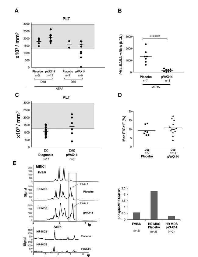Effect of pVAX14 on disease.
