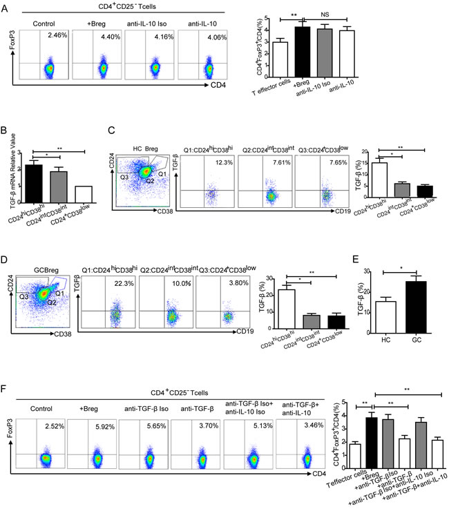Conversion of effector T cells to Tregs by CD19
