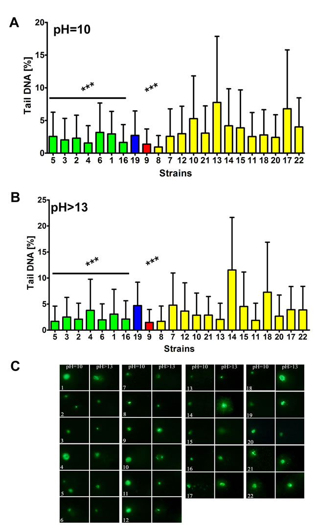The susceptibility to DNA double strand breaks (DSBs)