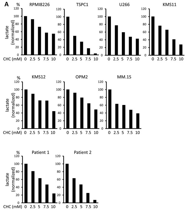 Additive effects of MCT blockade and metformin on intracellular pH and viability in MM cells.