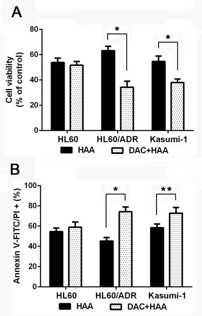 Decitabine increased cytotoxic effect of HAA in chemoresistant AML cells.