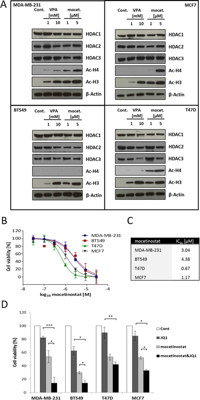 VPA and mocetinostat increase histone H3 and H4 acetylation and reduce cell viability, an effect that is further potentiated by JQ1 treatment.