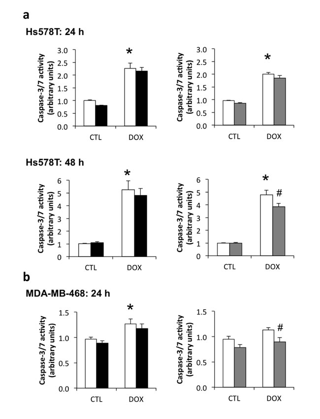 Contribution of endogenous IGFBP-3 to doxorubicin-induced apoptosis in Hs578T and MDA-MB-468 cells.