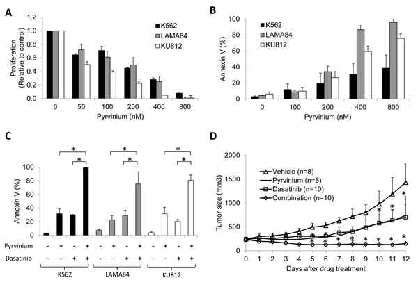 Pyrvinium alone, and in combination with dasatinib, inhibits growth of CML cells
