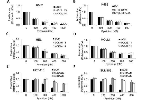 Reliance on CK1α for pyrvinium-induced cancer cell arrest is context-dependent.