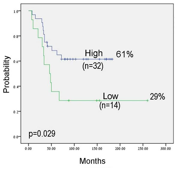 Kaplan-Meier analysis for progression free survival (PFS) by