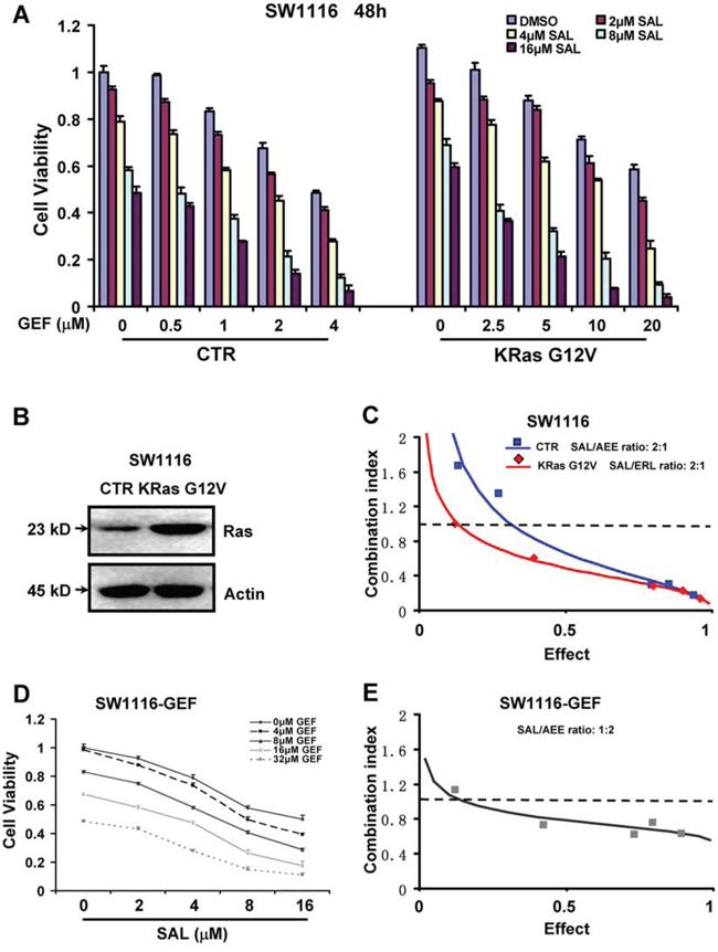 Combination of salinomycin and gefitinib overcomes gefitinib resistance in Ras-overexpressing and acquired gefitinib-resistant colorectal cancer cells.