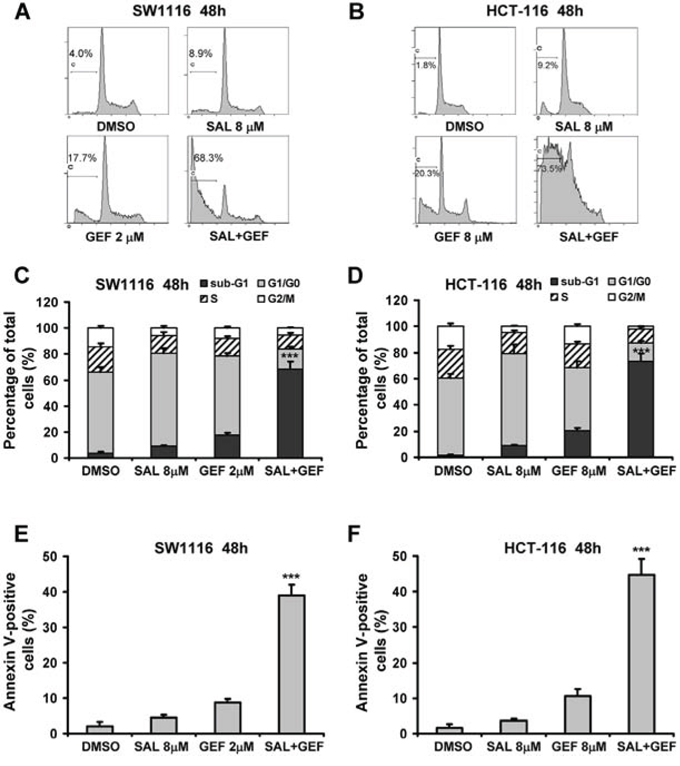 Synergistic induction of apoptosis in colorectal cancer cells by gefitinib and salinomycin.