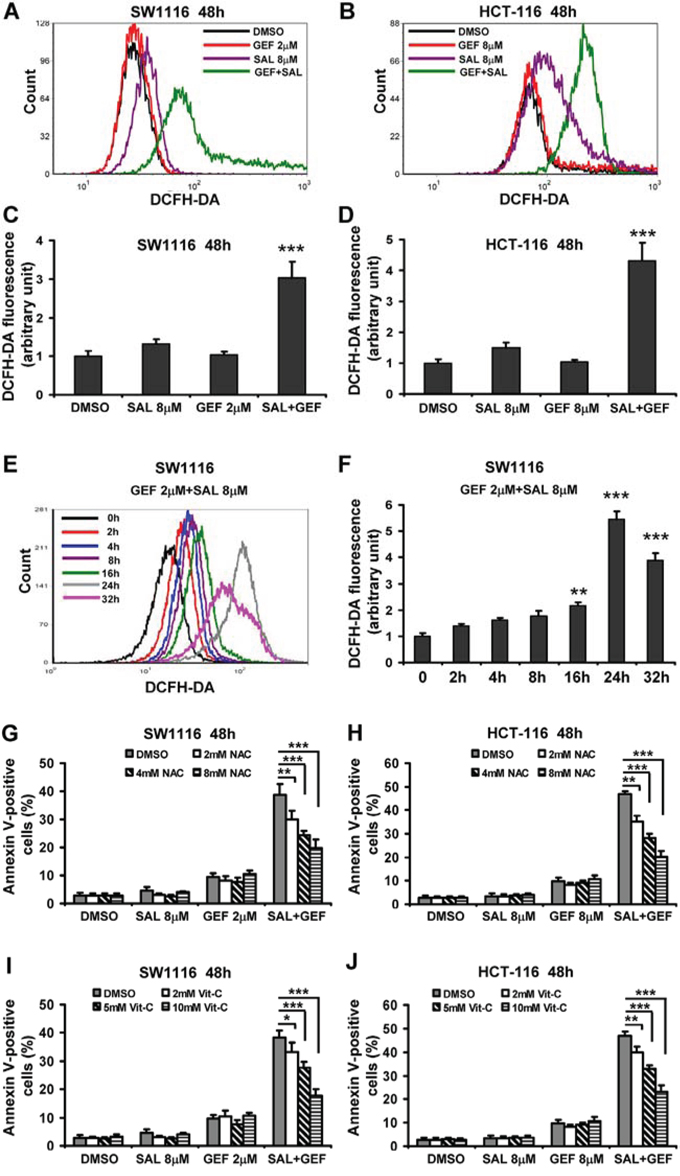 Gefitinib and salinomycin in combination treatment induces cell apoptosis involved in ROS production in colorectal cancer cells.