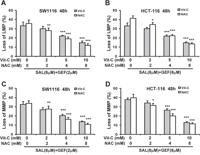 ROS generation contributes to loss of both lysosomal membrane potential and mitochondrial membrane potential induced by gefitinib and salinomycin in combination.