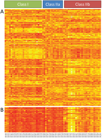 Gene expression analysis.