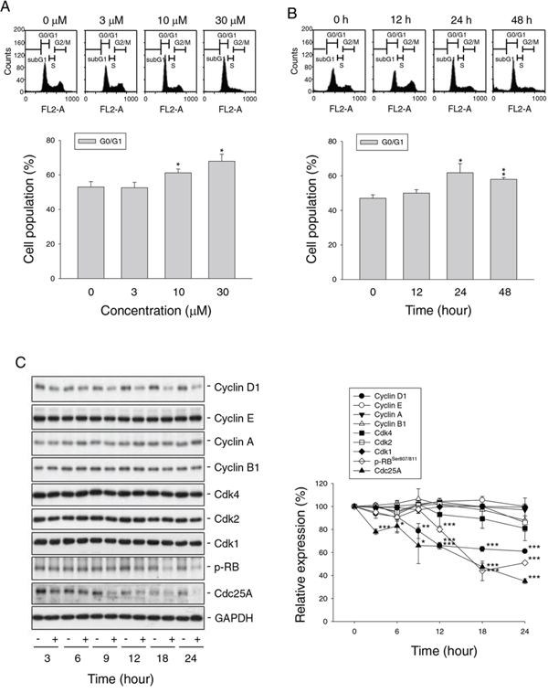 Effect of nitroxoline on cell cycle progression and related regulator proteins.