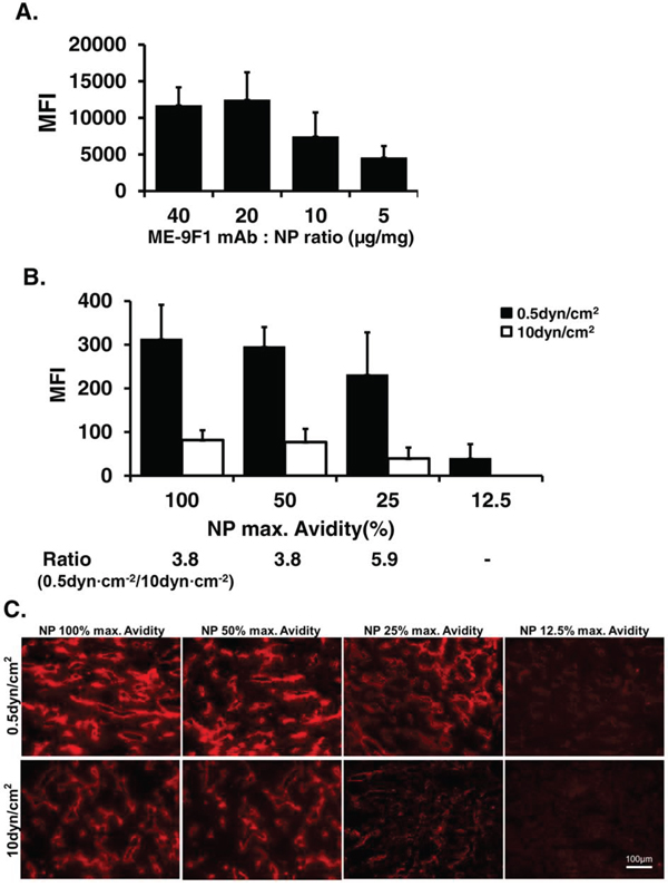 Nanoparticle coating avidity determines the degree of shear stress-dependent binding to endothelium under flow.