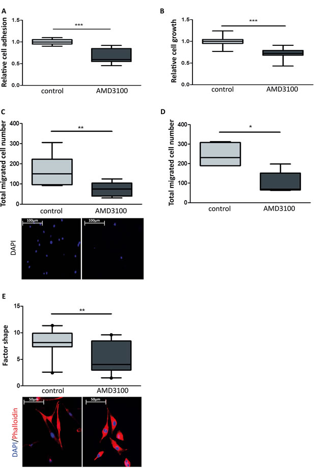 Effect of an allosteric CXCR4 inhibitor on breast cancer cell growth and migration.