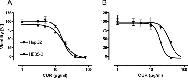 In high and low density pHCC cell cultures curcumin decreases cell viability.