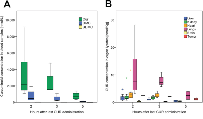 Bioavailability of curcumin in serum and organs after oral administration in mice.