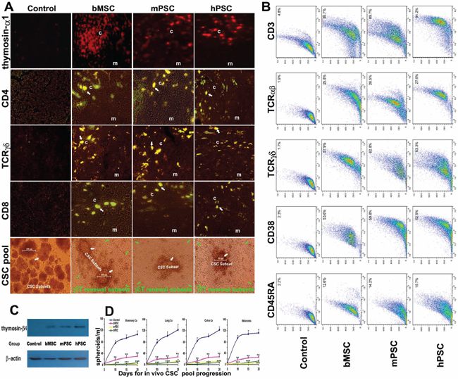 Integrative renewal of γδT-based immunocompetence.