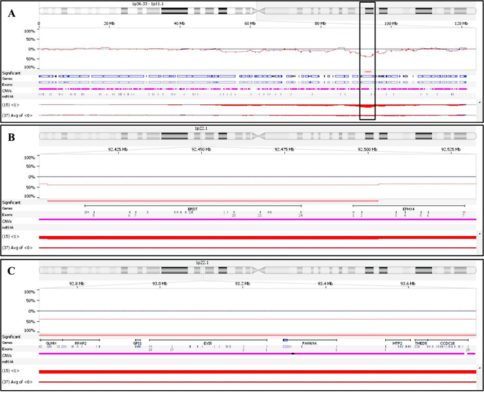 Comparison of chromosome 1 CNVs present in CR and PR/SD patients.