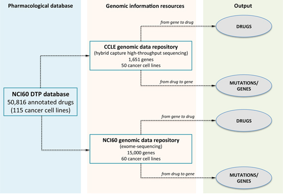 The database scheme of MDP.