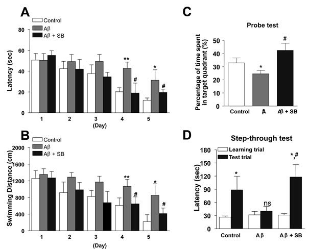 Inhibitory effects of SB271046 on memory impairment in the AD mouse model.