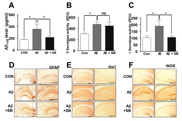Inhibitory effects of SB271046 on Aβ1-42 generation and neuroinflammation in the AD mouse model.